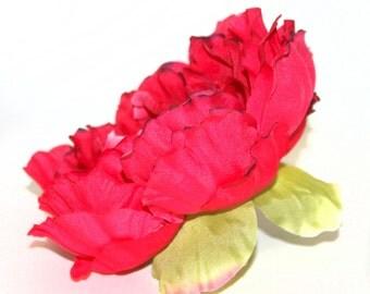 Darkest Pink Peony with Darkened Tips