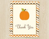 Pumpkin Thank You Cards for Fall Baby Showers, Autumn Chevron, Bridal, Weddingm, Birthday, Set of 24 folding cards/ Envelopes, FREE Shipping