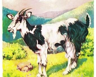 vintage art illustration farm animal billy the goat DIGITAL DOWNLOAD