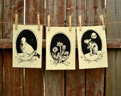 Pigeon, Flower, Rat Print combo