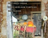 A Simple Life Magazine New FALL 2014 New Jill Peterson Primitive Country Americana
