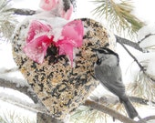Wild Bird Seed Feeder 1 lb. Heart - Organic - wreath