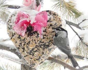 Wild Bird Seed Feeder 1 lb. Heart - Organic - wreath