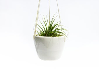 HANGING AIR PLANTER - Mini Handmade Ceramic Planter by Janelle Beaulieu