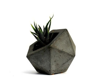 SALE: Geodesic Concrete Planter