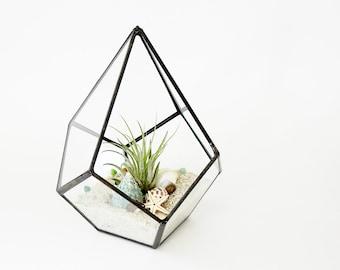 Geometric Terrarium Pod, Air Plant Glass Terrarium, Glass Planter