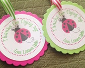 Little Ladybug Collection: Set of 8 Circle Favor Tags. Ladybug. Lady Bug. Lady Bird. Lime. Hot Pink. Bugs. Party Tags Circles. Personalized.