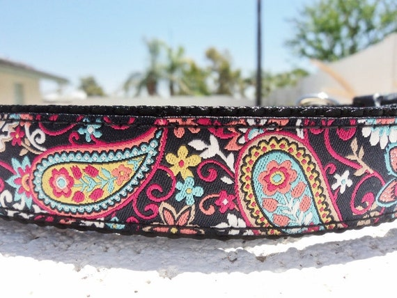 """Dog Collar Fiesta Paisley 1"""" wide side release buckle -no  martingale"""