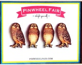 Push Pins Magnets Woodland Owl - Neutral Office College Gifts Under 25