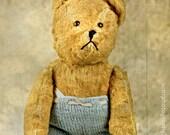 SALE of the Month, Teddy Bear photograph, fine art photography print, vintage toy photo, nursery wall art, baby decor,