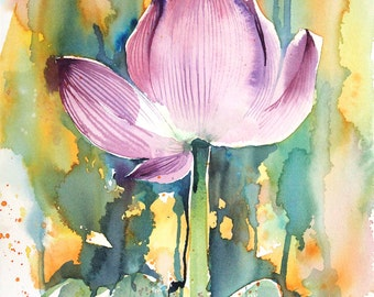 Harmony Sketches No.1 Lotus Flower, limited edition of 50 fine art giclee prints
