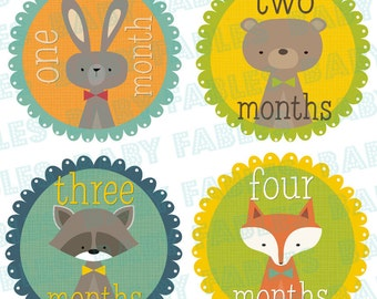 Monthly Baby Stickers, Baby Month Stickers, Baby Boy Month Stickers, Monthly Photo Stickers, Monthly Milestone Stickers, Newborn Baby
