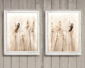 Chickadee Set of Two - Original Photographs - Soft Sweet Cream Beige Tan Minimal Pale Neutral Home Decor Wall Art