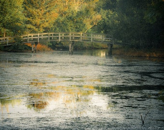 A Monet Landscape Fine Art Photography, Jenny Grist Mill Pond, PLYMOUTH, Massachusetts, Travel, Nature, Fall, Autumn