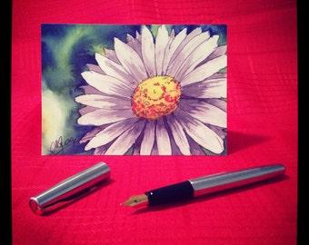 Daisy Greeting Card - single
