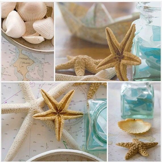 "Fine Art Photo-Coastal Home Decor- collage print- Children's Room Decor- Beach Photography-Turquoise-Sand-Seashells- ""Cooper Island"""