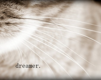 Dreamer - Inspirational Quote / Fine Art Animal Photography / Black and White Cat / Home Decor / Photo Print