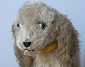 Steiff Dog - Mohair Dog - Steiff Toy Dog - 1950's Toy - Vintage Steiff