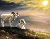 Dall Sheep wildlife animal large 24x36 original oils on canvas painting by RUSTY RUST / S-107