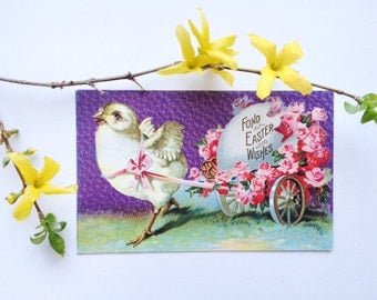 Antique Easter postcard, embossed, yellow chick pulling egg on cart with pink roses and ribbon, purple sky, vintage 1910s Easter decoration