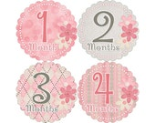 Baby Month Stickers, Girls Monthly Baby Stickers, Monthly Stickers, Monthly Bodysuit Stickers, Monthly Milestone Stickers, Floral (G173)