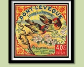 French Cheese Label  Print . Vintage Art Nouveau  Birds and Blossom  30 x30 cm  Poster