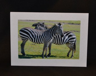 Original Photography Note Card - Zebra 3