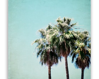 "California Photography - teal, aqua decor, palm trees, palm trees, mint home decor, LA style print - ""Trio II"" - Fine Art Photograph"