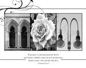 Alphabet Photography - Mom 8 x 10
