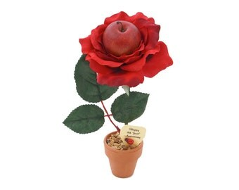 4th Anniversary gift - fruit rose