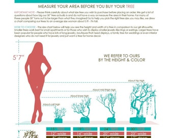 Jewelry Tree Size Chart