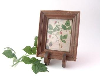 Vintage Framed Berries Botanical Print Rustic Cabin Woodland Decor