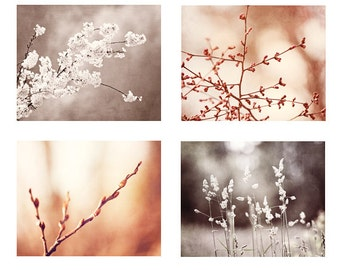 Brown, Peach Nature Print Set, beige salmon photography white cream botanical photos rustic wall art rust picture neutral photographs branch