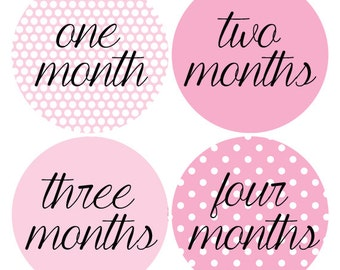 Pink Baby Stickers, Polka Dot Monthly Stickers, Baby Photo Props, Bodysuit Month Stickers, Baby Photo Props, Milestone (194)