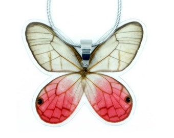 Real Butterfly Wing Necklace - Butterfly Wing Jewelry, Nature Art, Taxidermy, Real Butterfly