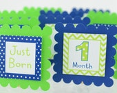 12 month Photo Banner, First Year Photo Banner, First Year Banner, Royal Blue and  Lime Green, chevron Theme and Dots Theme, c-1072