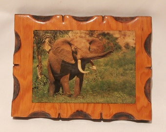 Vintage Elephant Wood Wall Hanging with Scallop Edges