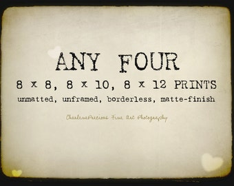 """10% OFF YOUR ORDER of any four 8 x 8"""", 8 x 10"""", or 8 x 12"""" prints!"""