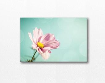 flower photography canvas floral art canvas wall decor 12x12 24x36 fine art photography nature canvas print pink canvas wrap aqua large art