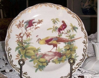 Set of Four Rutherford's Birds Soup/Salad Bowls
