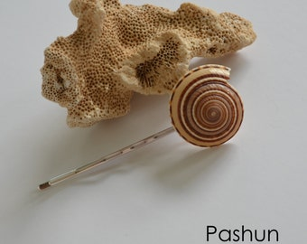 Seashell Hair Accessories ... Shell Bobby Hairpin (1163)