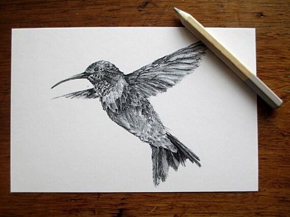 hnliche artikel wie kolibri postkarten hinweis karten. Black Bedroom Furniture Sets. Home Design Ideas