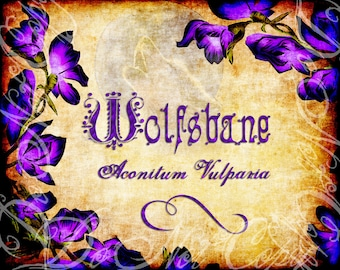 Instant download / Wolfsbane Halloween Witches Label -Aconitum Vulparia-Printable Digital JPEG Art- LLJ010