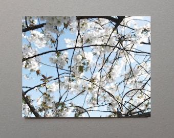 White Flower Print Wall Flower Decor Spring Decor Abstract Flowers Spring Floral Decor Spring Cottage Wall Art Living Room Flower Gift Print