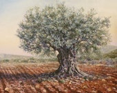 Olive Tree in the Valley -   Original oil painting by Miki Karni