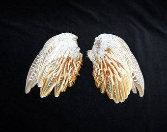 """9-10"""" Pheasant wings Taxidermy bird avian pair feathers wing feather set WING03"""