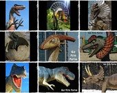 9 Dinosaur Photos, Boys Room Wart Art, Dinosaur Prints, Boys room decor, playroom decor, playroom art, dinosaur art, dinosaur pictures