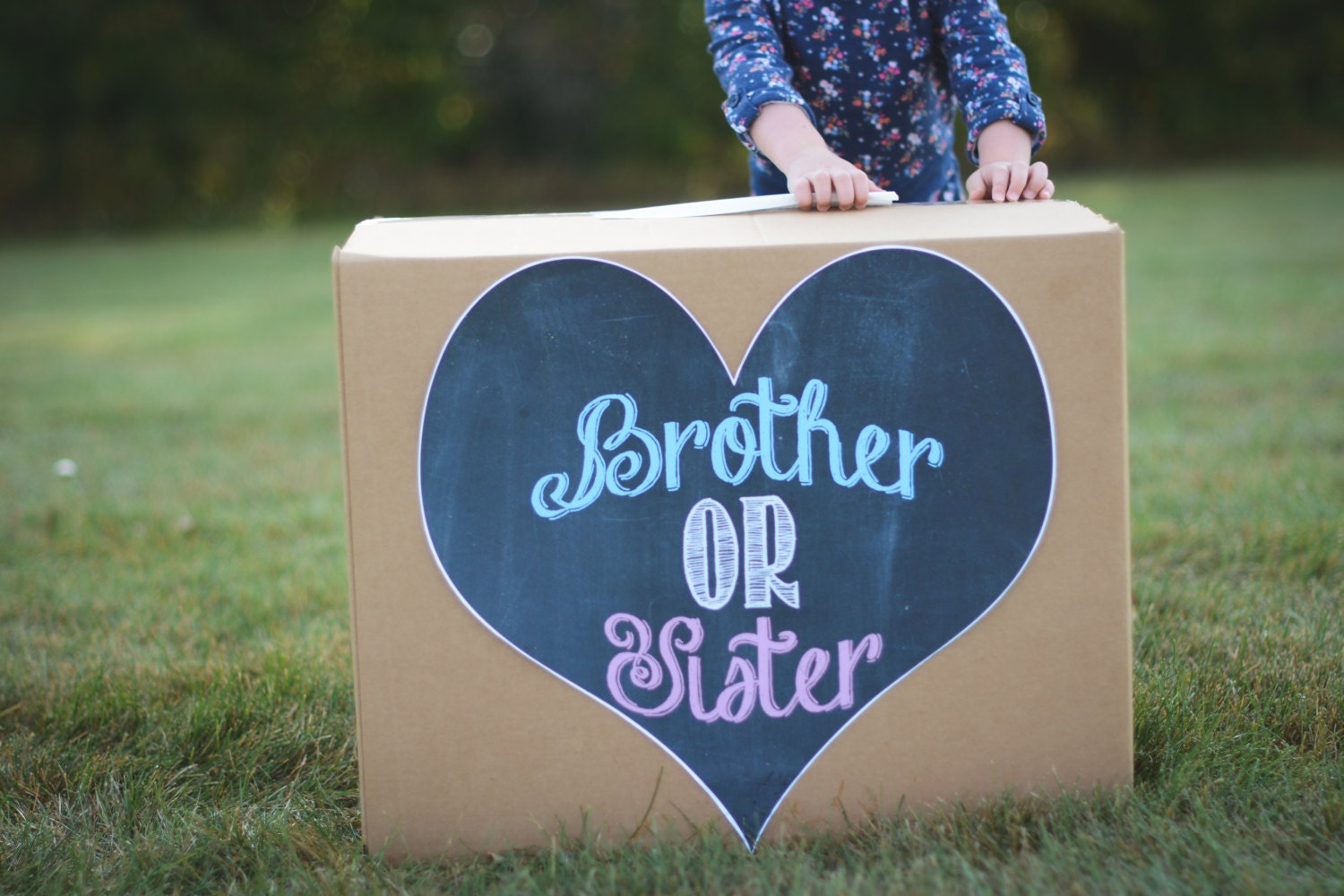 ?zoom & Brother or Sister gender sibling reveal balloon box sign Aboutintivar.Com