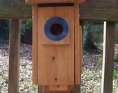 Blue Bird House  Nesting Box with Viewing Port