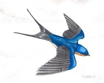 Original Bird Art: Flying Barn Swallow Watercolor Painting 8 X 10